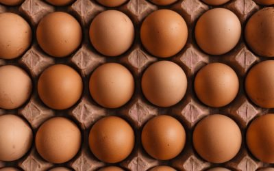 Five Facts About Duck Eggs